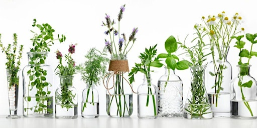 Spring Into Clean Living