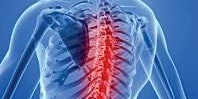 Spinal Masqueraders and Spinal Masqueraders Expanded Study Days