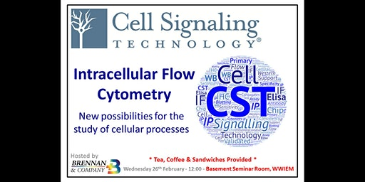 CST - Intracellular Flow Cytometry