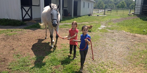 Spring Fling-FREE Pony Rides and Summer Camp Preview