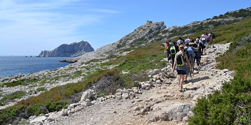 Balade découverte des Calanques : Callelongue - Marseilleveyre