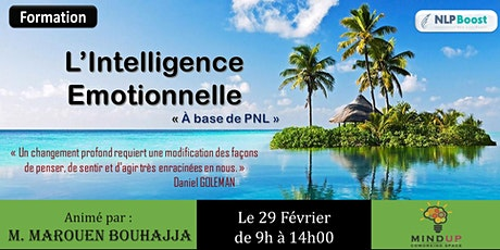 Intelligence Émotionnelle billets