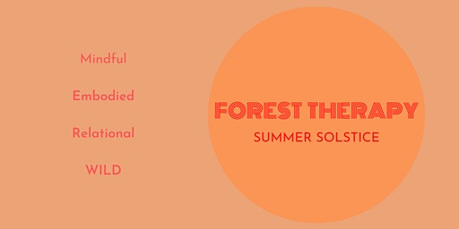 Forest therapy - Summer Solstice