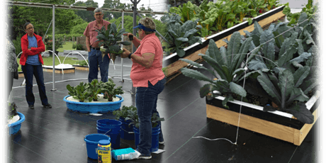Hydroponic Gardening for the Homeowner tickets