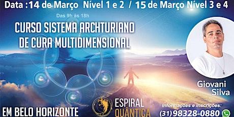 Curso Formação: Sistema Arcturiano de Cura Multidimensional em BH ingressos