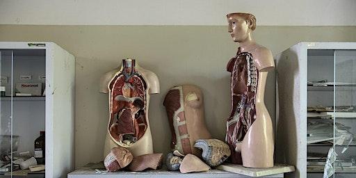 Anatomy and Physiology Pub Quiz!