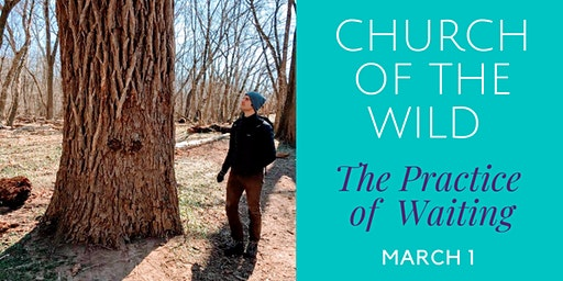 Church of the Wild - The Practice of Waiting