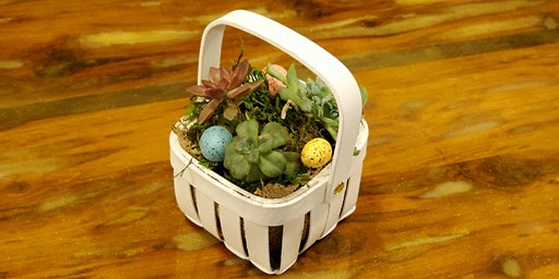 Sips and Succulents Spring Baskets!