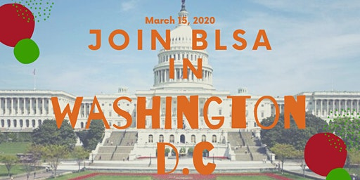 History and Culture Tour in Washington, D.C w/BLSA