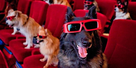 Movie Night with Dogs tickets