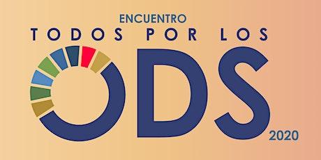 Encuentro de ODS entradas