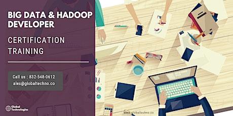 Big Data and Hadoop Developer Certification Training in Oak Bay, BC tickets