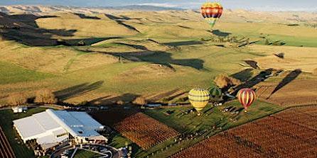 New Zealand Wine Tasting with Sileni Estates