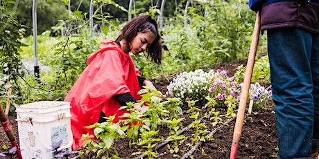 Gardening with Farm and Wilderness and the Brooklyn Urban Garden School tickets