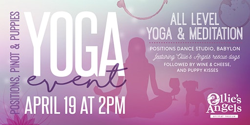 Positions, Pinot & Puppies Yoga Event