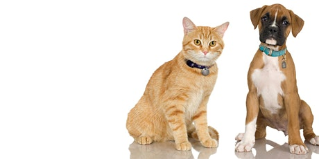 Responsible Pet Ownership Bylaw Review (Public Engagement) tickets