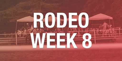 Rodeo Box Seats - Week 8 2020