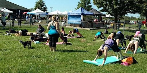 Goat Yoga & County Fair Day