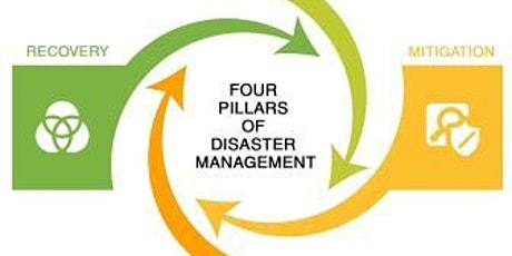 GIS and Remote Sensing in Disaster Risk Management Course tickets