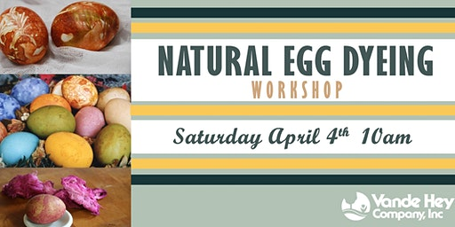 Natural Egg Dyeing Workshop