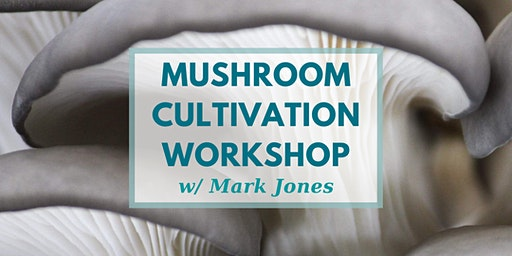 Cultivating Kingdom Fungi:  Mushrooms for People and the Planet