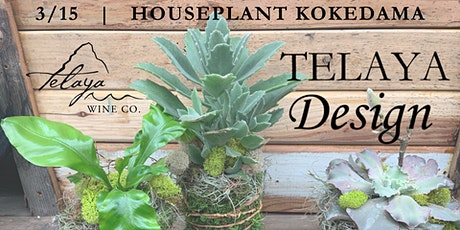 Telaya Design: Houseplant Kokedama tickets
