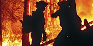 Entry Level Wildland Fire Training