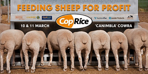 CopRice Feeding Sheep for Profit field day DAY THREE