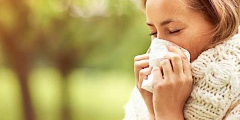 Botanical Wellness: Herbal Remedies for Seasonal Allergy Relief