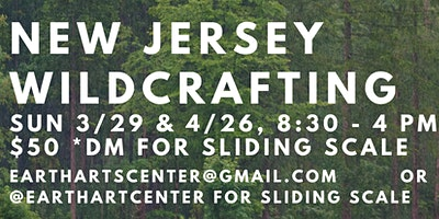 New Jersey Wildcrafting Trip