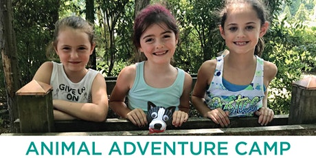VBSPCA Summer Animal Adventure Camp   August 3-7 (Ages 6-9) tickets