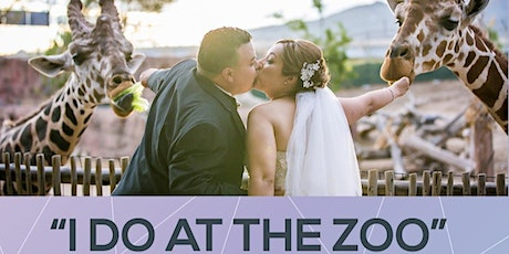 Lifetime of Memories Bridal and Quince Summer Show tickets