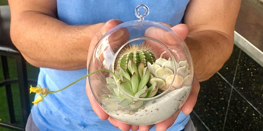 PIGMENT: Succulent Orb Workshop at Crushed