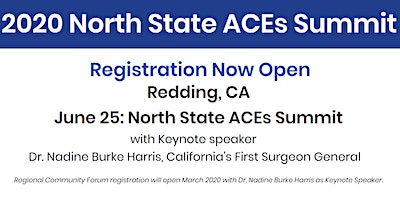2020 North State ACEs Summit - Scholarship Application