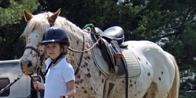FREE ONLINE EVENT - How to safely introduce your child to horses.