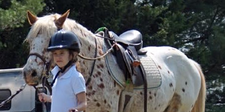How to safely, affordably, and effectively introduce your child to horses.