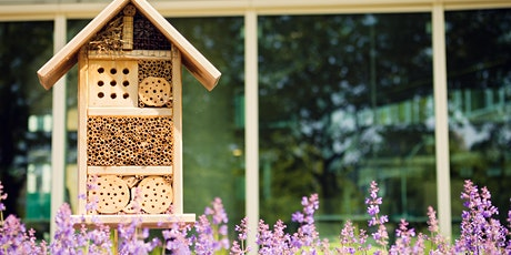 Bee Friendly Gardening and Water-wise Talk tickets