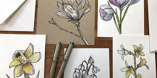 Intro To Drawing: Spring Flowers