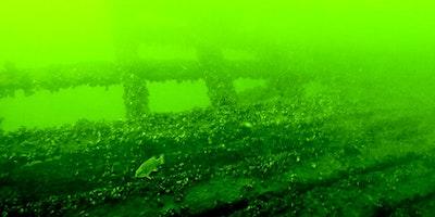ROV Shipwreck Tour, Sunday July 12, 2020