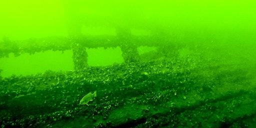 ROV Shipwreck Tour, Sunday August 2, 2020
