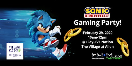 Sonic the Hedgehog Gaming Party