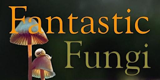 Fantastic Fungi Fundraiser