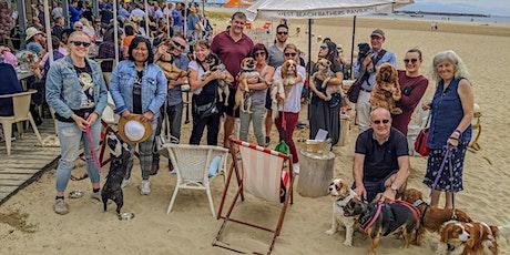 St Kilda Puppy Pub Crawl tickets