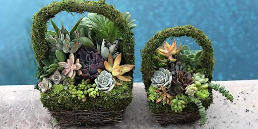 Easter Succulent Baskets Sip 'n' Succs