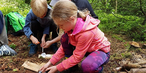 Family Bushcraft Days - Dalby Forest