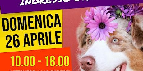 Il Cane Come Aiuto Al Nostro Benessere biglietti