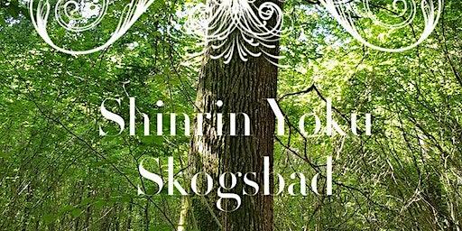 Shinrin Yoku  Skogsbad 28 mars