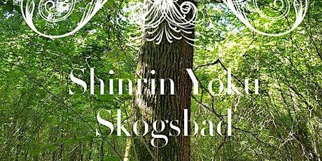 INSTÄLLT! pga av corona   Shinrin Yoku  Skogsbad Påskafton! tickets