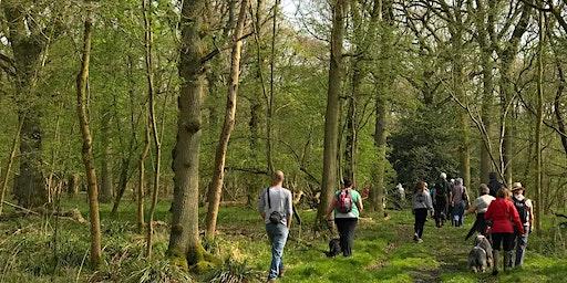 Guided Walk: Exploring Spernal Park