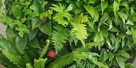 Prospettive vegetali - Verde pensile e verde verticale biglietti